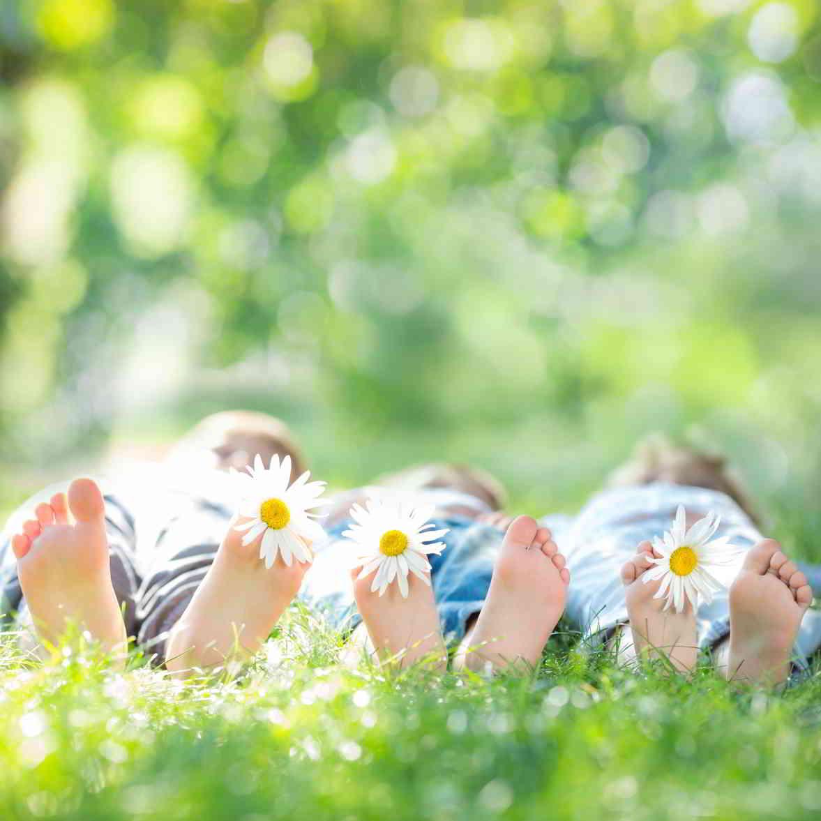 רגליים עם פרחים על הדשא